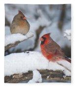 Northern Cardinal Pair 4284 2 Fleece Blanket