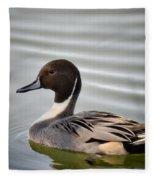 Northern Pintail Duck  Fleece Blanket