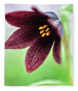 Northern Rice Root Fritillaria Fleece Blanket