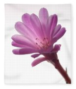Notocactus Herderii Flower Fleece Blanket