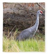 November Sandhill Crane Fleece Blanket