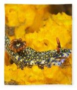 Nudibranch On Sponge Fleece Blanket