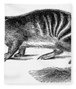 Numbat Fleece Blanket