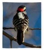 Nuttalls Woodpecker Fleece Blanket