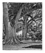 Oak Alley Backyard Monochrome Fleece Blanket