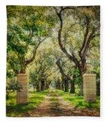 Oak Tree Lined Drive Fleece Blanket