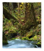 On The Banks Of Big Spring In The Missouri Ozarks Fleece Blanket