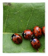 One Lady Bug Voted Off The Island Fleece Blanket