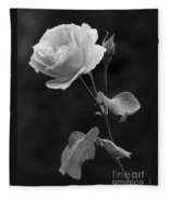 One Rose In Black And White Fleece Blanket