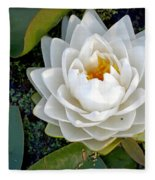 Optical Illusion In A Waterlily Fleece Blanket