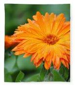 Orange And Green II Fleece Blanket
