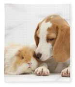 Orange-and-white Beagle Pup And Alpaca Fleece Blanket