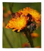 Orange Hawkweed Fleece Blanket