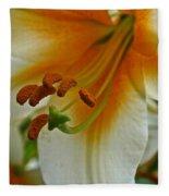 Orange Interior Fleece Blanket