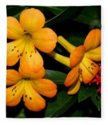 Orange Rhododendron Flowers Fleece Blanket