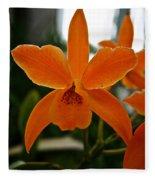 Orange Sherbert  Orchid Fleece Blanket