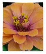 Orange Zinnia_9475_4267 Fleece Blanket