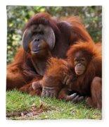 Orangutan Mother And Baby Fleece Blanket