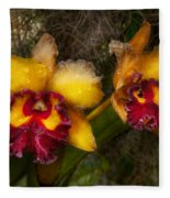 Orchid - Cattleya - Dripping With Passion  Fleece Blanket