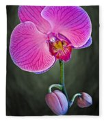 Orchid And Buds Fleece Blanket