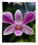 Orchid In Kandy Fleece Blanket