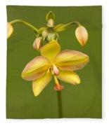 Orchid Number 1 Fleece Blanket