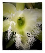 Orchid With Feathery Ends Fleece Blanket