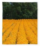 Oregon Orange Field Fleece Blanket