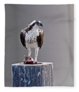 Osprey And Sushi Fleece Blanket