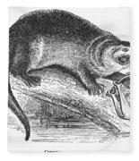 Otter, 1873 Fleece Blanket
