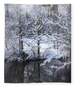 Our Pond In The Snow Fleece Blanket