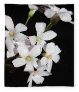 Oxalis Flowers 3 Fleece Blanket