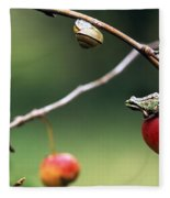 Pacific Tree Frog On A Crab Apple Fleece Blanket