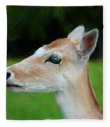 Painted Deer Fleece Blanket
