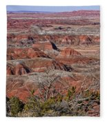 Painted Desert Fleece Blanket
