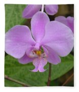 Pale Pink Orchid Fleece Blanket