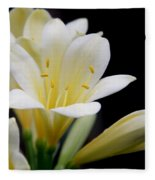 Pale Yellow Clivia Miniata Flowers Fleece Blanket