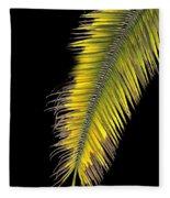 Palm Frond Against Black Fleece Blanket