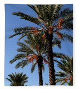 Palms9895b Fleece Blanket