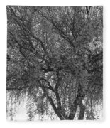 Palo Verde Tree 2 Fleece Blanket
