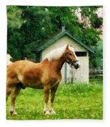 Palomino In Pasture Fleece Blanket