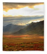 Panoramic Image Of Late Afternoon Fleece Blanket