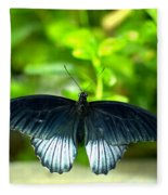 Papilio Lowii II Fleece Blanket