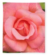 Paris Rose Fleece Blanket
