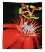 Passiflora Vitifolia - Scarlet Red Passion Flower Fleece Blanket