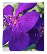 Passion Purple Fleece Blanket