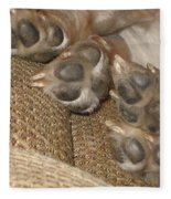Paws Fleece Blanket
