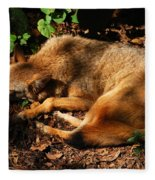 Peaceful Slumber Fleece Blanket