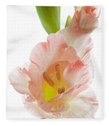Peach Flushed Gladiolus Fleece Blanket