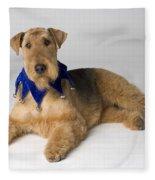 Pedigree Dog Fleece Blanket